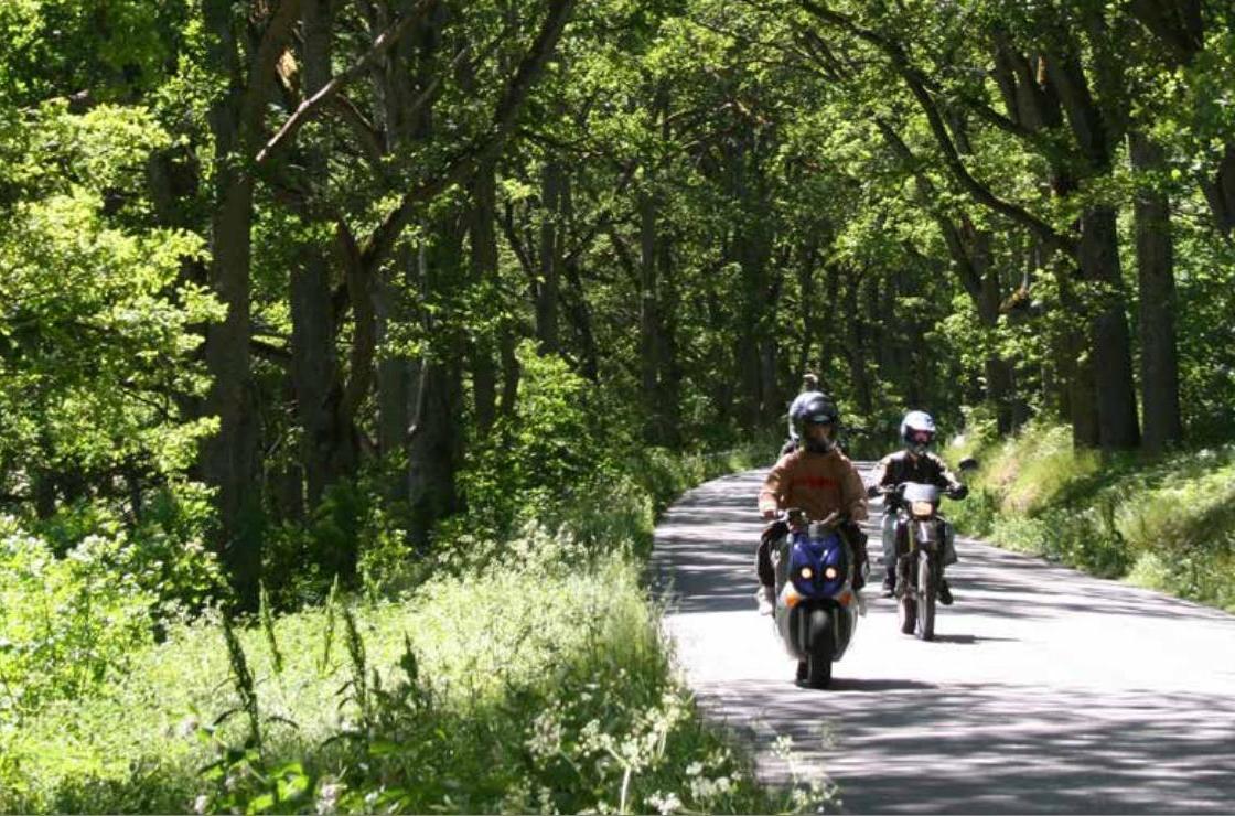 Yttrande över samrådshandlingar Grönstrukturplan för Nynäshamns stad samråd 30 juni -30 september 2015