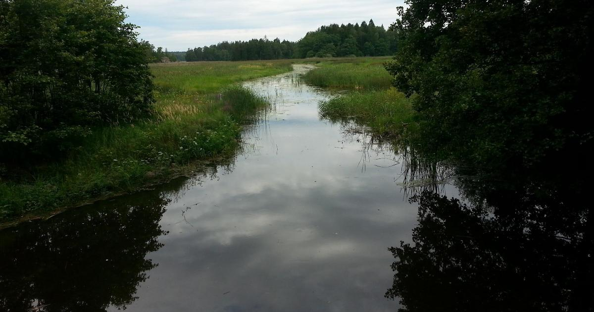 Yttrande över samrådshandling angående självreglerande tröskel i sjön Muskan, Ösmo Brister i den demokratiska processen, avsaknad av alternativa lösningar och kostnader samt ointresse av förbättringsförslag.