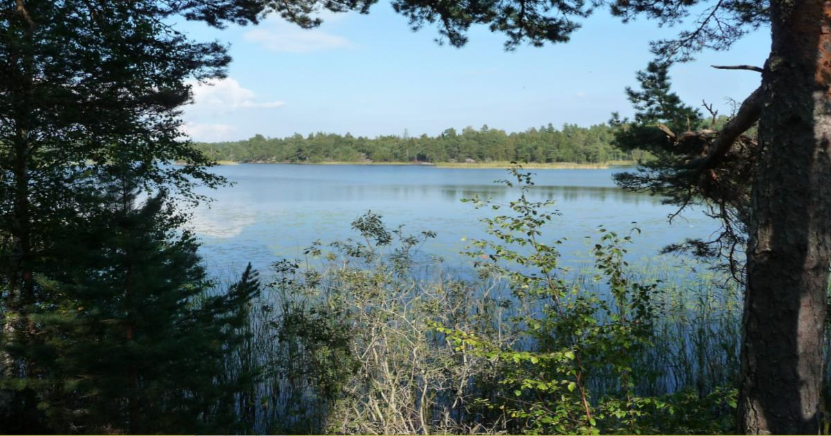 Yttrande Yt- och grundvattenplan för Nynäshamns kommun Fler mindre reningsverk innebär lägre kostnader vilket medför lägre framtida avgifter.