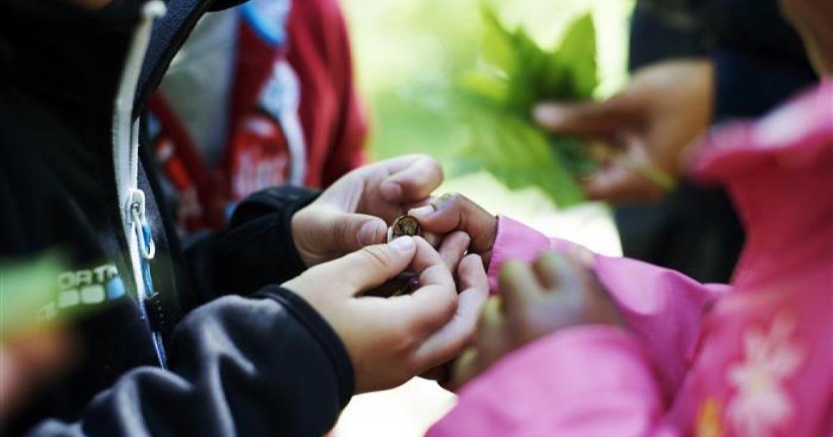 2019-06-09 - Fråga om barnbokslut i Nynäshamns kommun - Hur många gånger har barnbokslutet redovisats och när sker nästa redovisning?