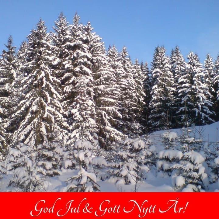 2019-12-23 - God Jul & Gott Nytt År - Tillönskas Dig av Sorundanet Nynäshamns kommunparti