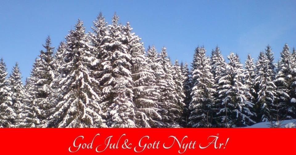 God Jul & Gott Nytt År Tillönskas Dig av Sorundanet Nynäshamns kommunparti