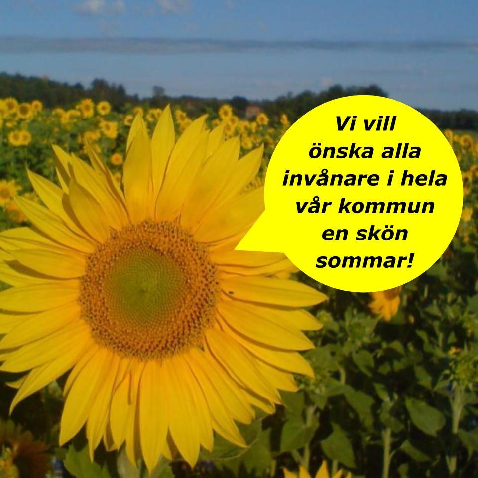 2020-07-09 - Sommarhälsning! - En skön sommar vill vi önska alla invånare i hela vår kommun!