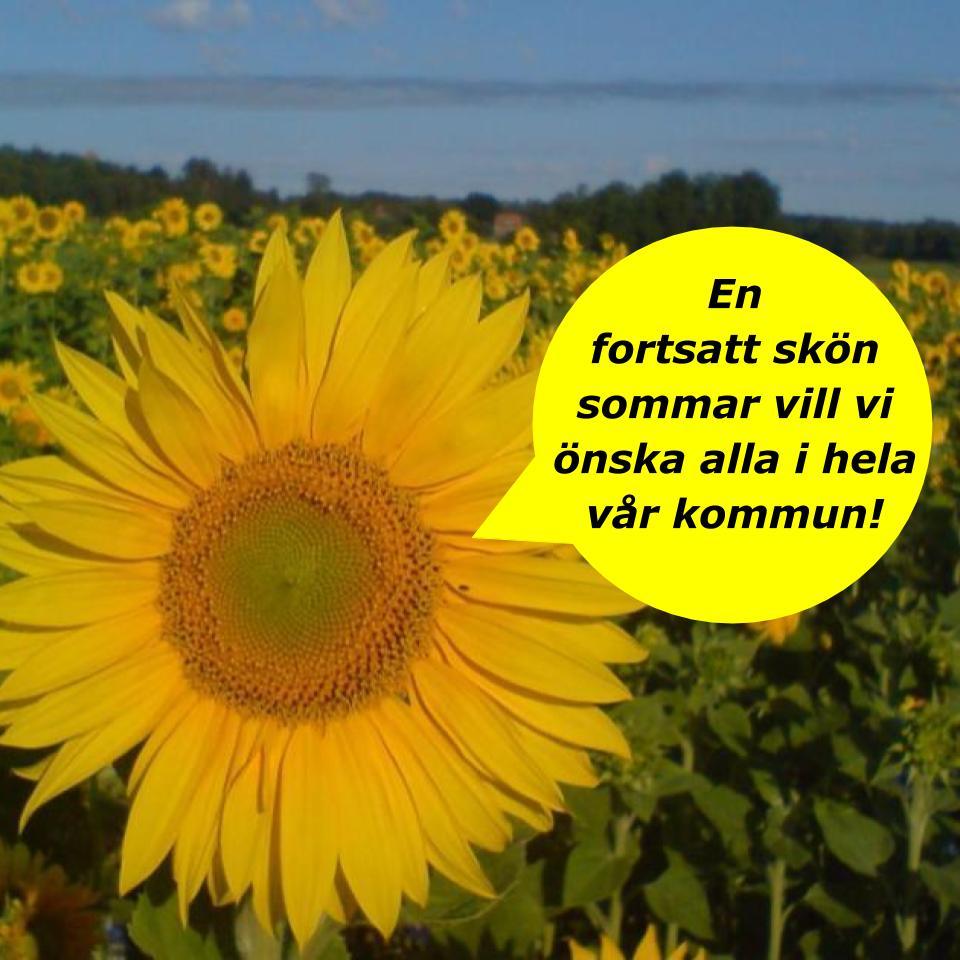 2020-08-03 - Sommarhälsning! - En fortsatt skön sommar önskar vi alla i hela vår kommun!