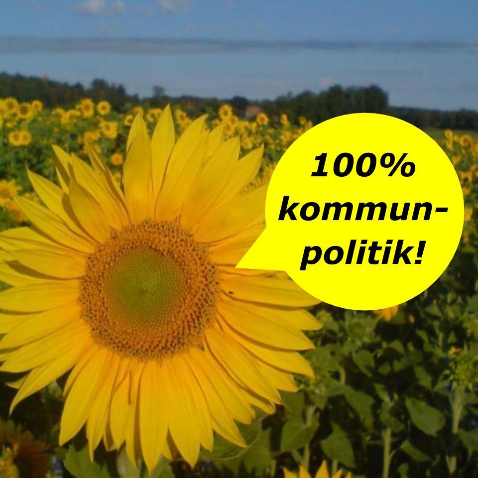 2020-10-02 - 100% kommunpolitik - Vi engagerar oss bara i frågor som berör invånarna i vår kommun. Inget mer, inget mindre. Självklart tycker vi. Vad tycker Du?