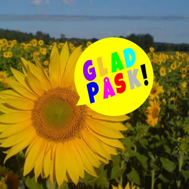 """Glad Påsk!. Alla invånare i hela vår kommun önskas en riktigt """"Glad Påsk""""!"""