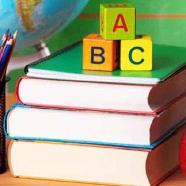 Vi frågar om tillgång på läromedel i grundskolan. Hur mycket pengar läggs på läromedel per elev och läsår?